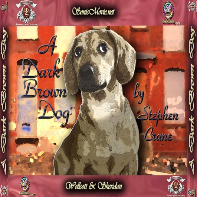 A Dark Brown Dog (unabridged)