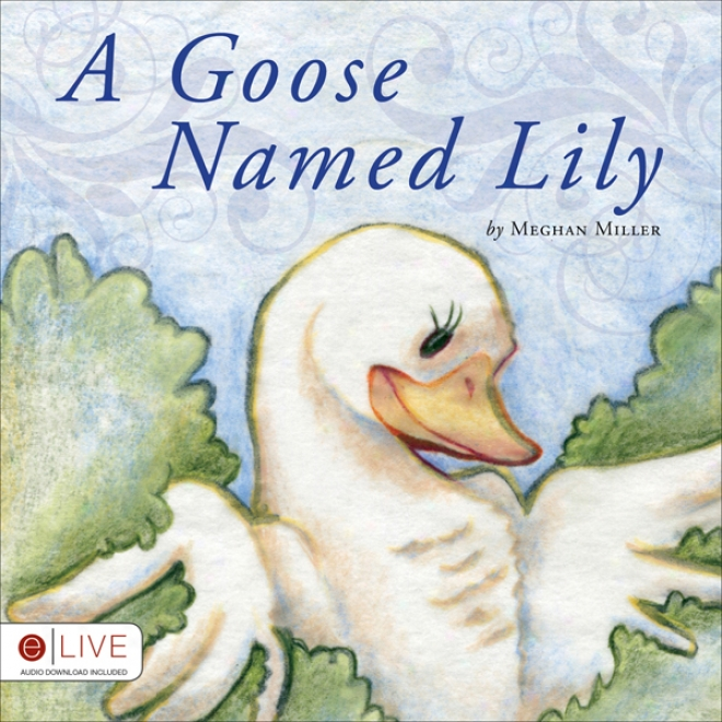 A Goose Named Lily