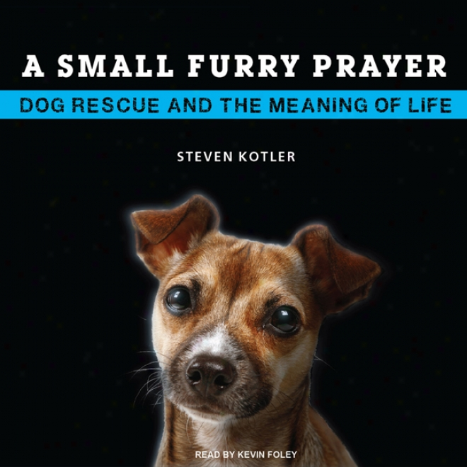 A Small Furry Prayer: Dog Rescue And The Intention Of Life (unabridged)