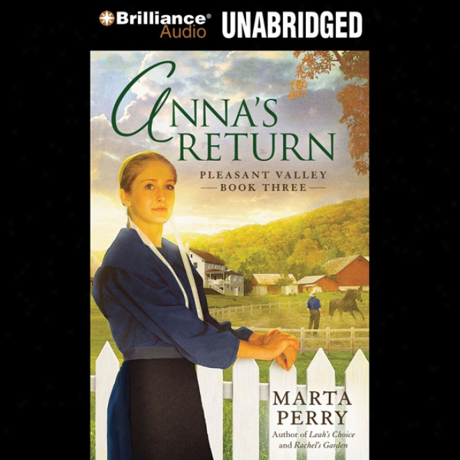 Anna's Return: Pleasant Valley, Book 3