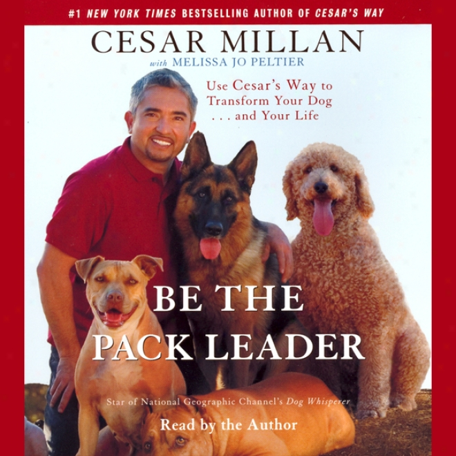 Be The Burden Leader: Uaing Cesar's Way To Transform Your Dog And Your Life