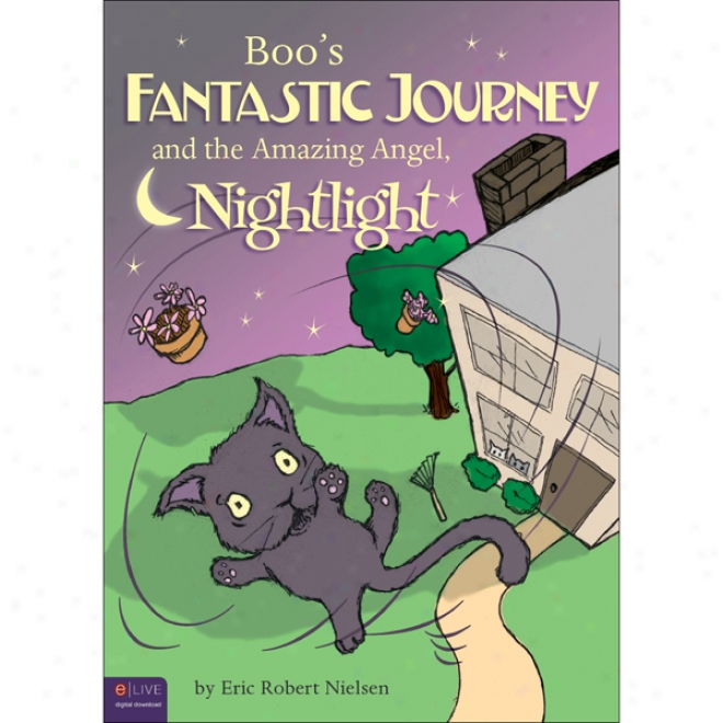 Boo's Fantastic Journey And The Amazing Spirit Nightlight (unabridged)