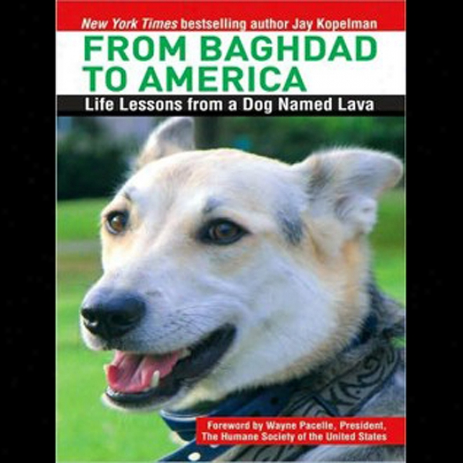 From Baghdad To America: Life Lessons From A Dog Named Lava (unabridged)
