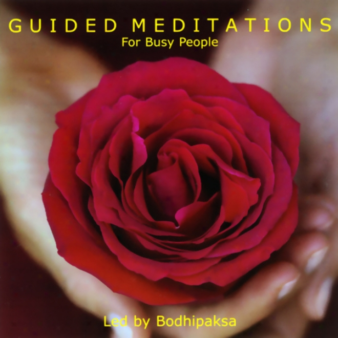 Guided Meditations For Busy People (unabridged)