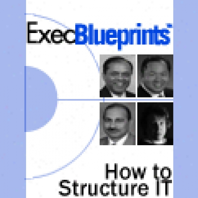 How To Structure It: Finding The Orderly Organizational Design: Execblueprint (unabridged)