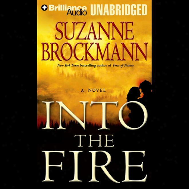 Into The Fire: Troubleshooters, Book 13 (unabridged)