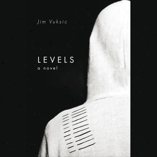 Levels: A Novel