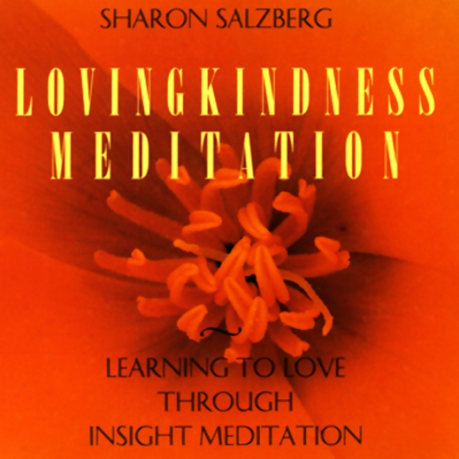 Lovingkindness M3ditation: Learning To Love Through Insight Meditation