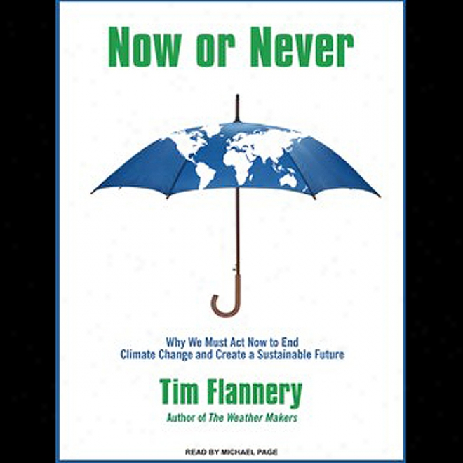 At this time Or Never: Why We Must Act Now To End Climate Change And Create A Sustainable Future (unabridged)
