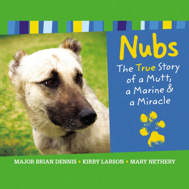 Nubs: The True Story Of A Mutt, A Marine & A Miracle (unabridged)
