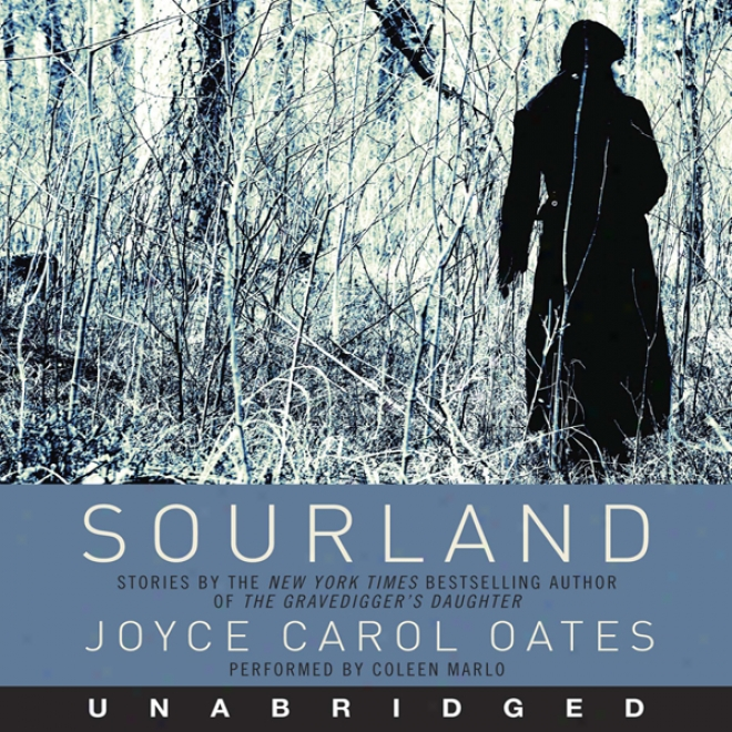 Sourland: Stories Of Loss, Grief, And Forgetting (unabridged)