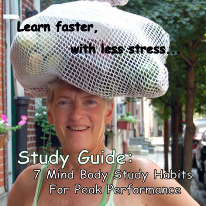 Study Guide: 7 Study Habits For A+ Performance And Exam Stress Management (unabridged)
