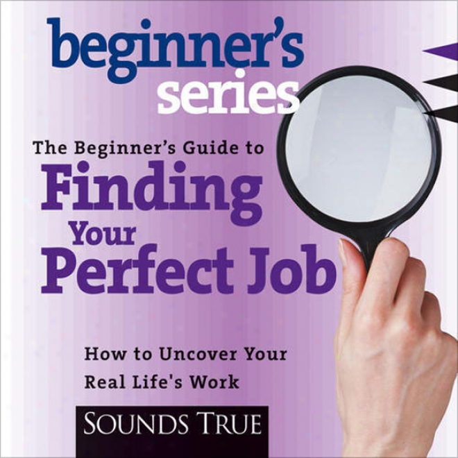 The Beginner's Guide To Finding Your Perfect Job: How To Disover Your Real Life's Work