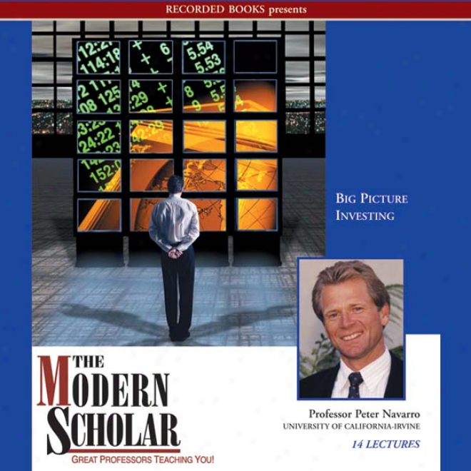 The Modern Scholar: Big Picture Investing