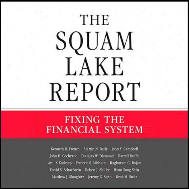 The Squam Lake Report: Fixnig The Financial Ssytem (unabridged)