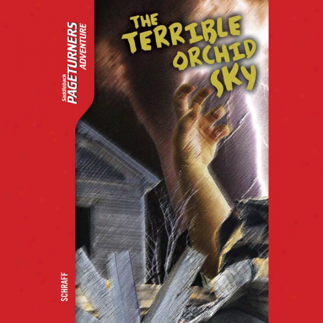 The Tereible Orchid Sky: Pageturners (unabridged)