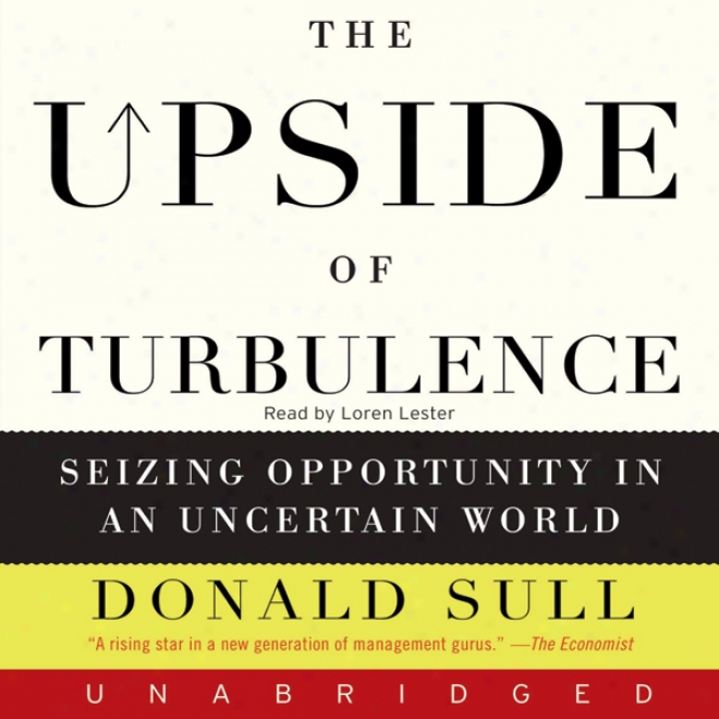 The Upside Of Turbulence (unabridged)