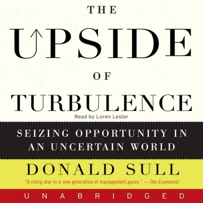 The Upside Of Turbulence (unabridged)