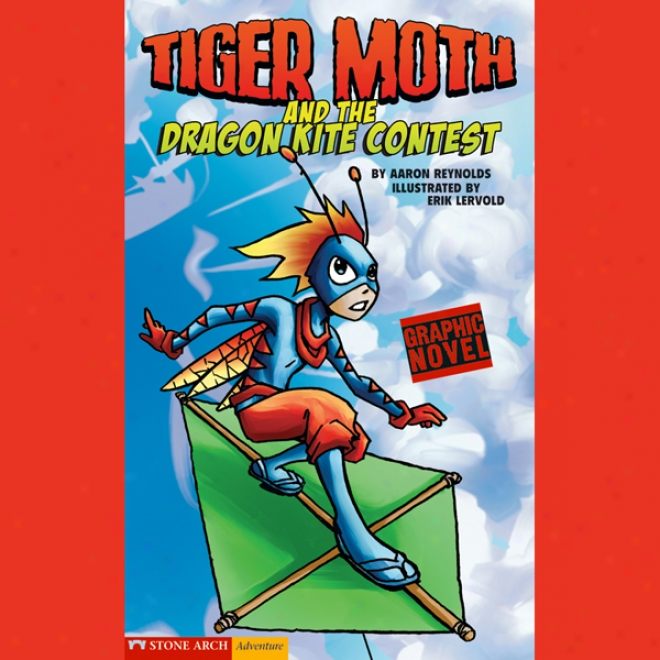 Tiger Moth And The Drgon Kite Contest
