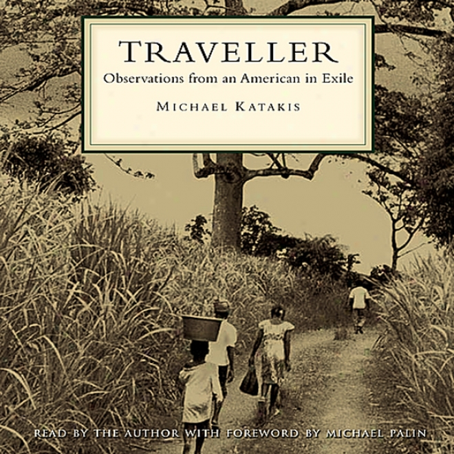 Traveller: Observations From An American In Separation  (unabridged)