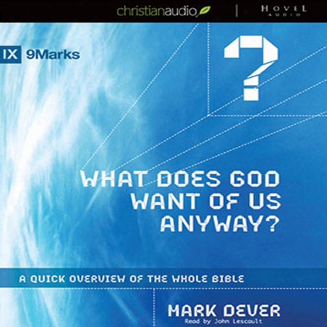 What Does God Want Of Us Anyway?: A Quick Overview Of The Whole Bible (unabridged)