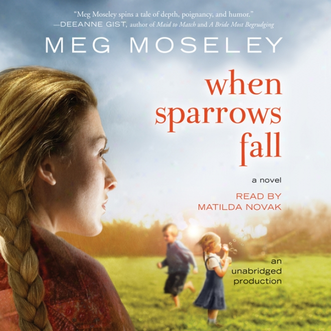 When Sparrows Fall: A Novel (unabridged)
