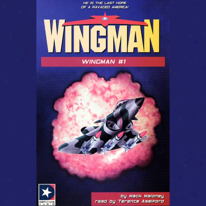 Wingman Collection I: Books 1-4