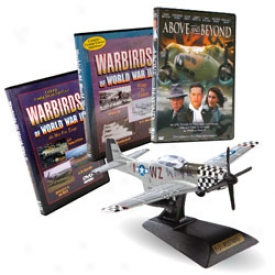 Above And Beyond Attending P-51 Diecast Model Kit