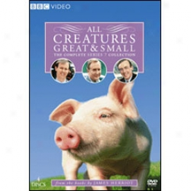 All Creatures Great And Small Series 7 Dvd