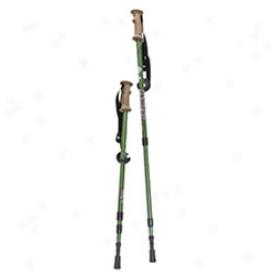 Backcountry Hiking Sticks