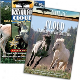 Cloud: Stallion Of The Rockies Collection Dvd