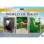 World Of Birds Dvd