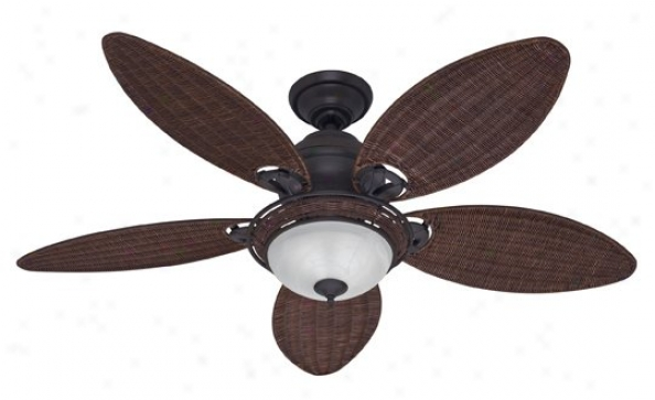 21647 - Hunter - 21647 > Ceiling Fans