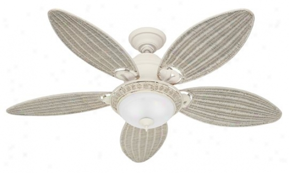 21648 - Hunter - 21648 > Ceilint Fans