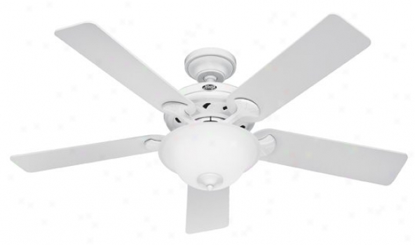 22390 - Hunter - 22390 > Ceiling Fans
