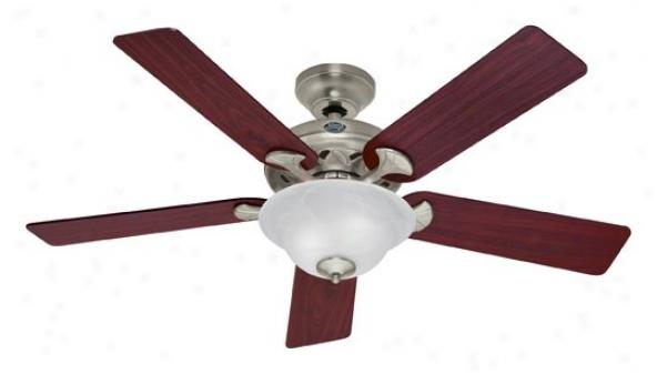 22451 - Hunter - 22451 > Ceiling Fans
