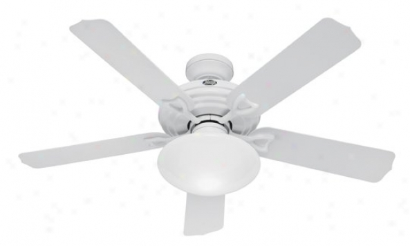 23697 - Hunter - 23697 > Ceiling Fans