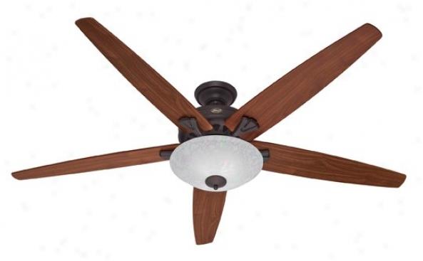 23963 - Hunter - 23963 > Ceiling Fans