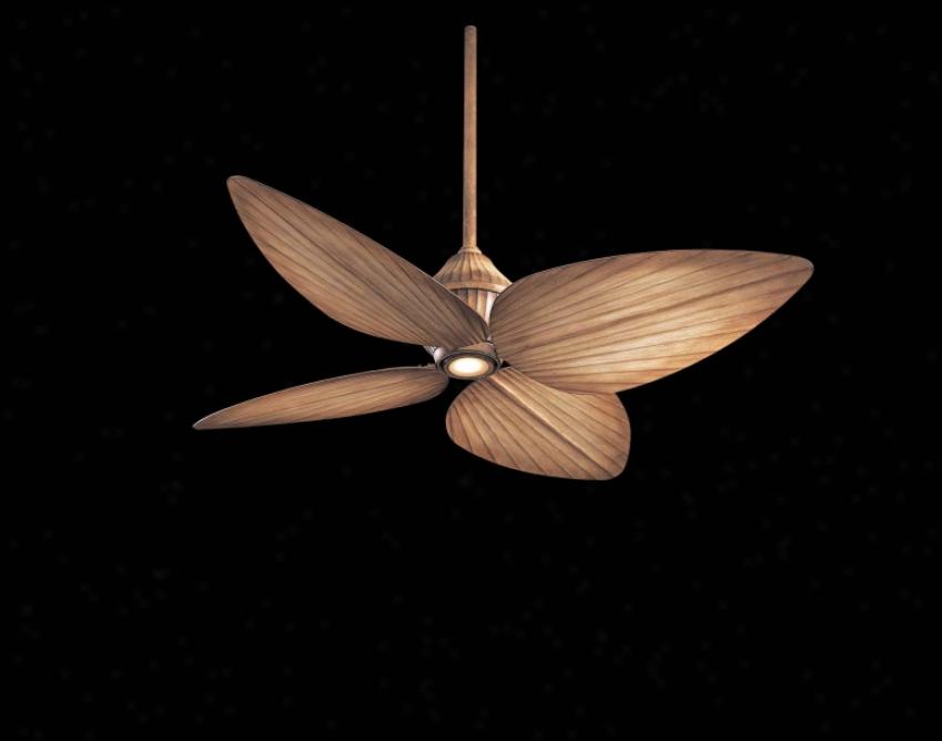F581-bg - Minka Aire - F581-bg > Ceiling Fans