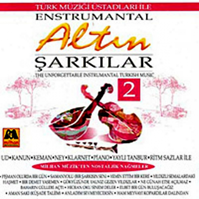 Altin Sarkilar - 2 Enstrumantal (the Unforgettable Instrumental Turkish Music)