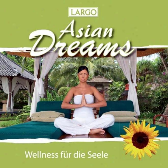 Asian Dreams - Entspannungsmusik Fã¼r Tai Chi, Joga, Qi Gong Und Meditation (gema-frei)