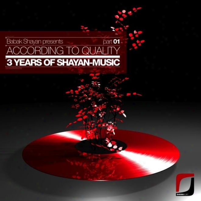 Babak Shayan Presents: According To Quality - 3 Years Of Shayan-music Part 01