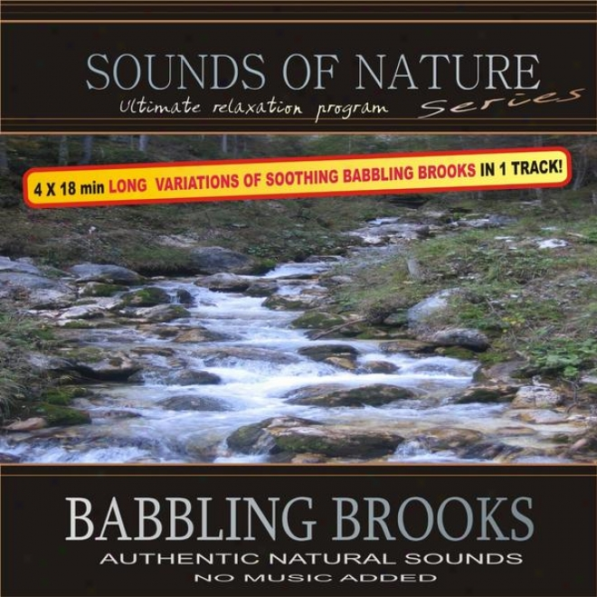 Garrulity Brooks (sounds Of World: 4x18min Extended Variations Of Soothing Babbling Brooks In 1 Track)