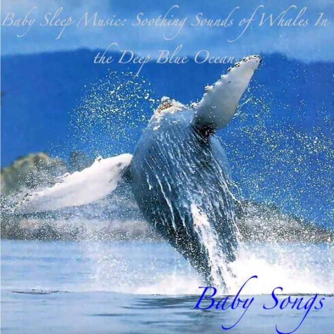 Baby Sleep Music: Soothing Sounds Of Whaies In The Deep Blue Ocean, On account of Sleep, Meditation And Yoga
