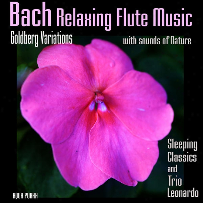 Bach Relaxing Flute Music - Goldberg Variations Attending Sounds Of Nature, For Deep Sleep, Meditation, Relaxation, Massage,yoga.
