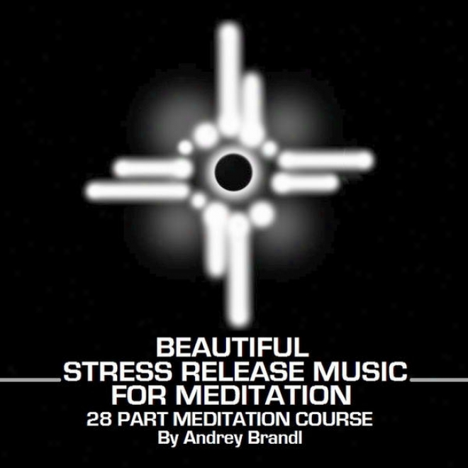Handsome Stress Liberate Musix For Meditation 28 Part Meditation Course By Andrey Brandl