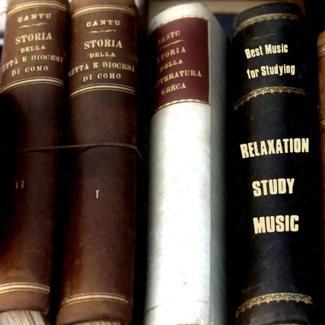 Bes Music For Studying,musique Pour L'ã©tude,musik Fã¼r Das Studium,mãºsica Paara El Estudio