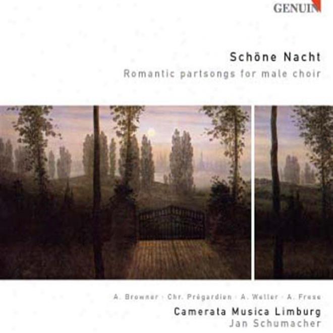 Choral Concert: Camerata Musica Limburg - Vaughan Williams, R. / Schubert, F. / Silcher, F. / Gluck, F. / Nigel, W. / Pracht, R. /