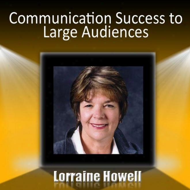 Communication Success To Large Audiences - How To Relax And Stay Focuded In The Media Spotlight Including Media Interviews, Networ