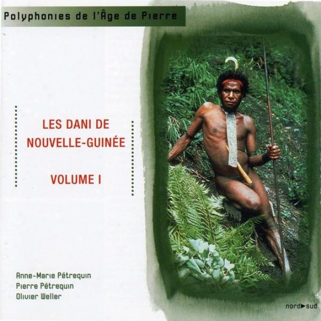Les Dani De Noucelle Guinã©e Volume 1 , Les Soirã©es Adolescents Et Hommes Jeunes